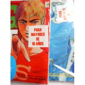 GTO Tomo de Manga