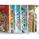 Saint Seiya Tomo de Manga